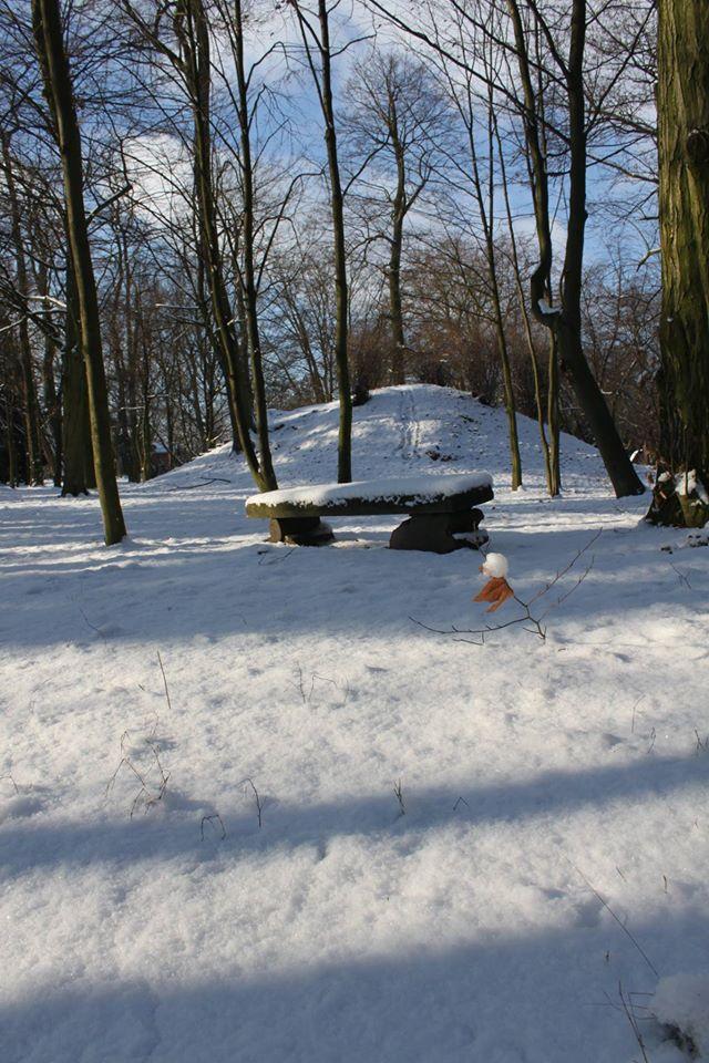 Ślimacza górka w parku w Dobrzycy