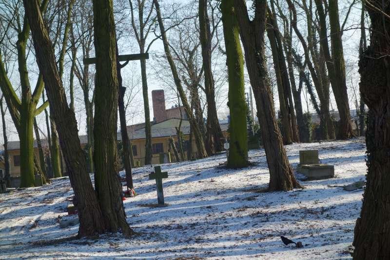 Cmentarz ewangelicki Pleszew