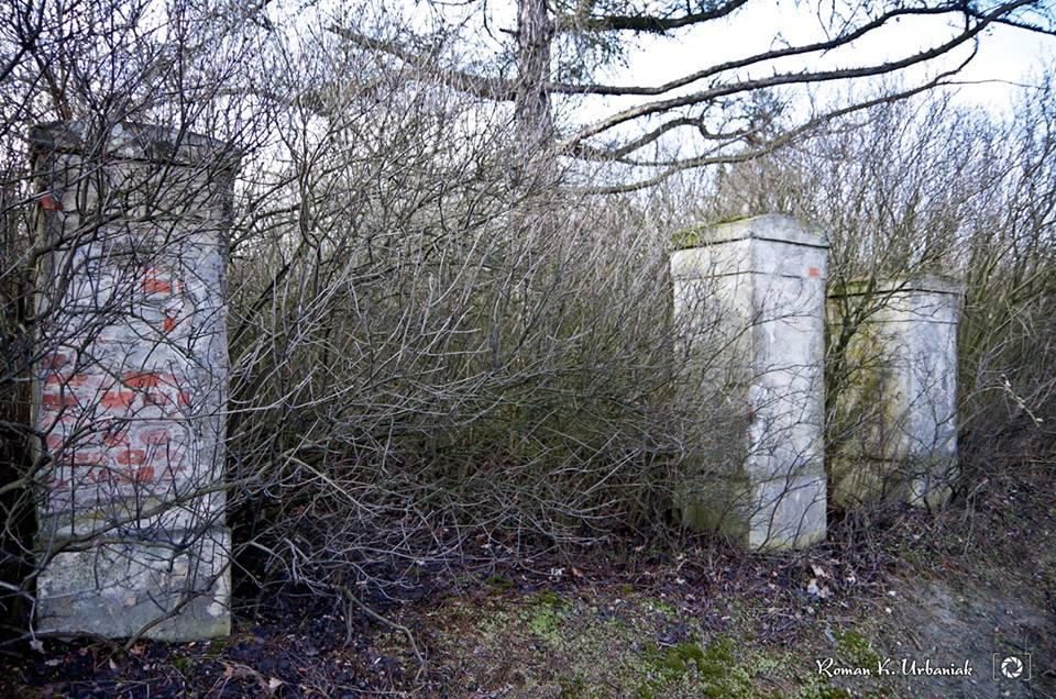 Cmentarz ewangelicki w Dobrej Nadziei (5)