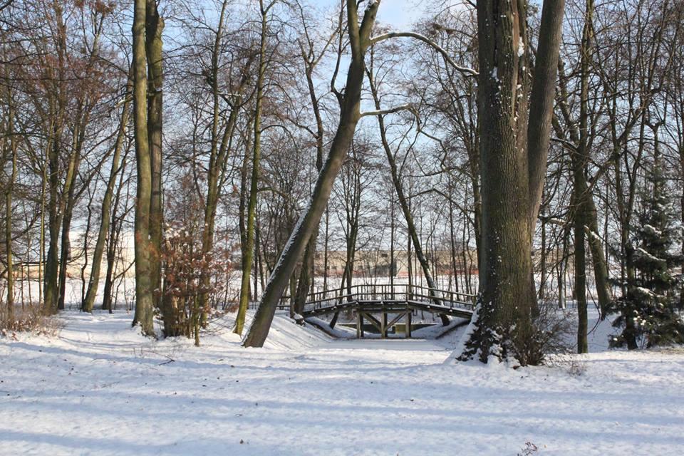 Mostek w parku w Dobrzycy