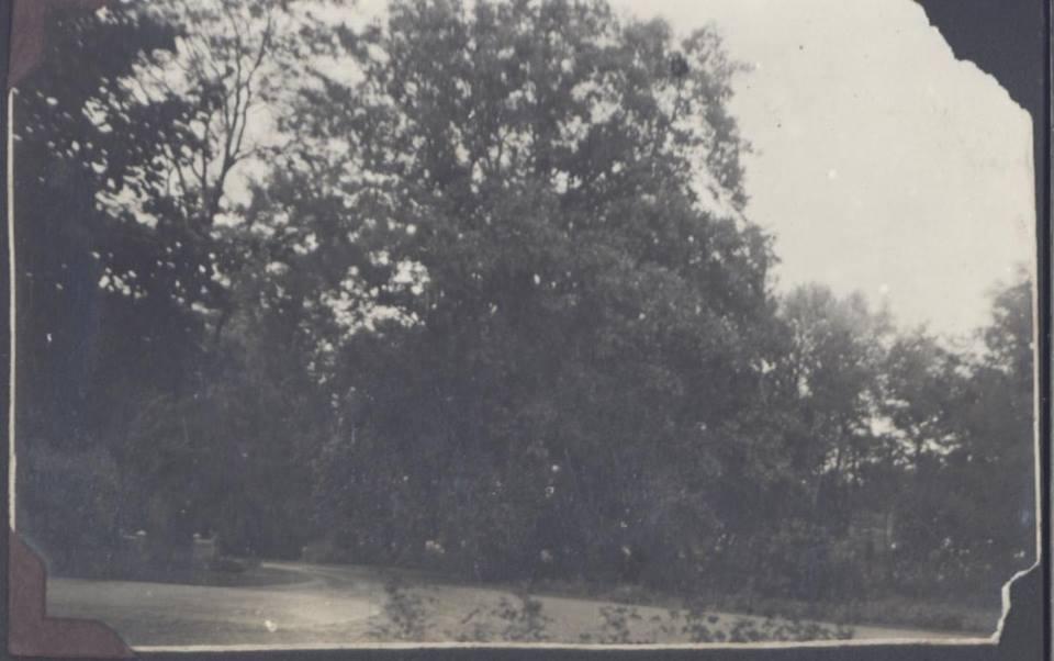 Park w Dobrzycy na starym zdjęciu