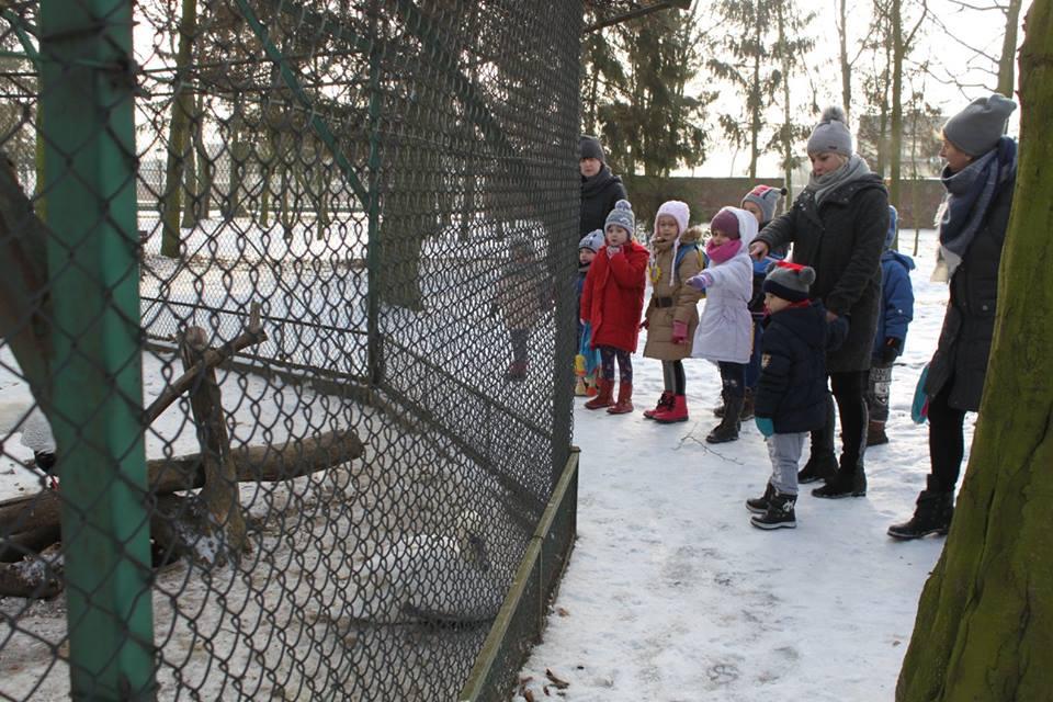 Woliera dla ptaków w parku w Dobrzycy - pałacowe ferie luty 2017