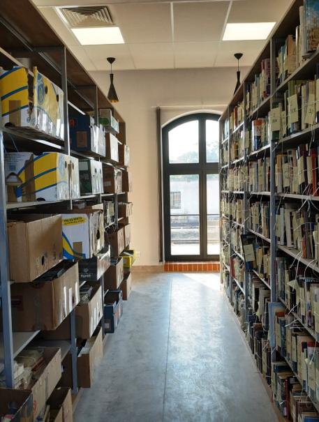 Biblioteka-czołó.jpg
