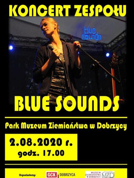Koncert plenerowy w parku w Dobrzycy