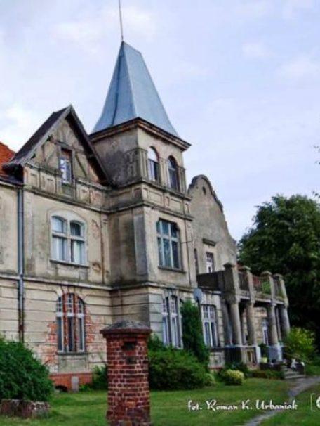 Pałac-w-Skrzypni.jpg