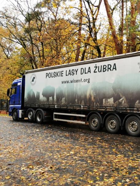 Samochód-do-transportu-żubrów_fot.-T.-Rakowski-czolo.jpg
